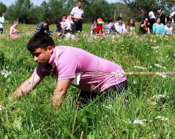 сочинение на татарском языке про сабантуй